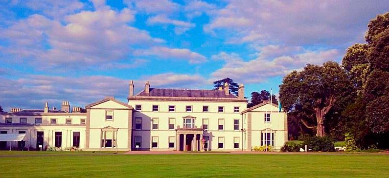 fota house summer events